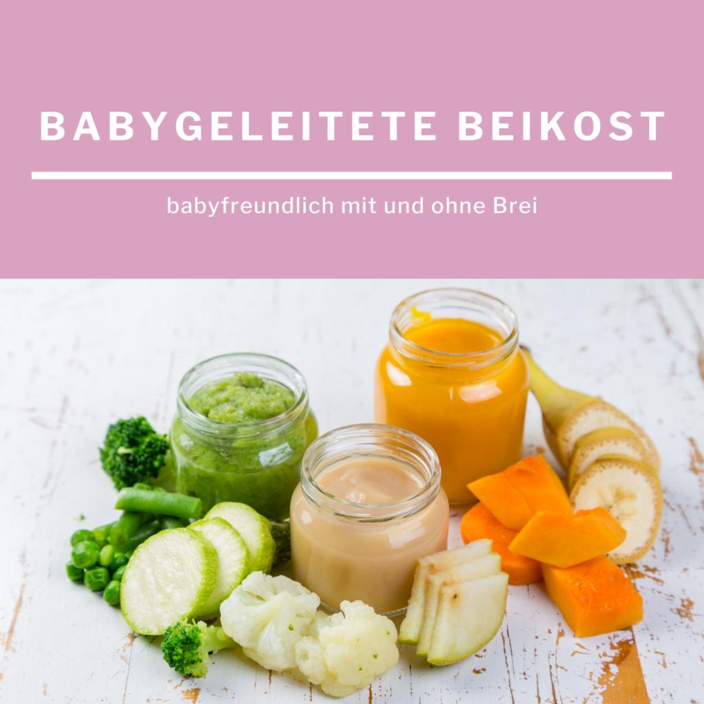 Babygeleitete Beikost